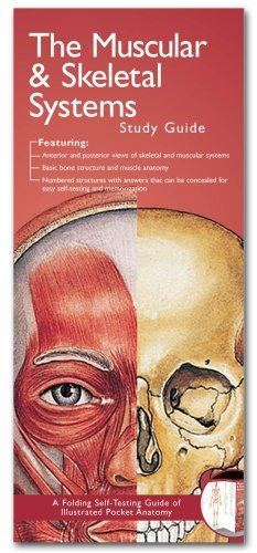 Anatomical Chart Company's Illustrated Pocket Anatomy