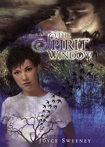 Download The spirit window